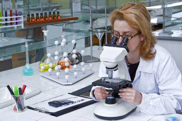 проверка анализов у кошки в лаборатории