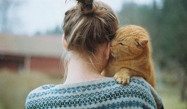 кошка облизывать своих хозяев