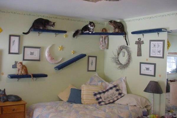 настенный кошачий домик