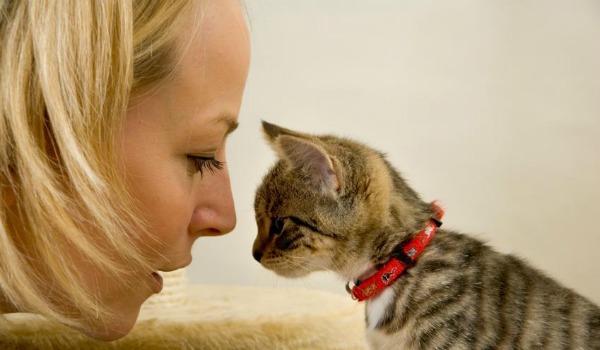 девушка воспитывает котенка